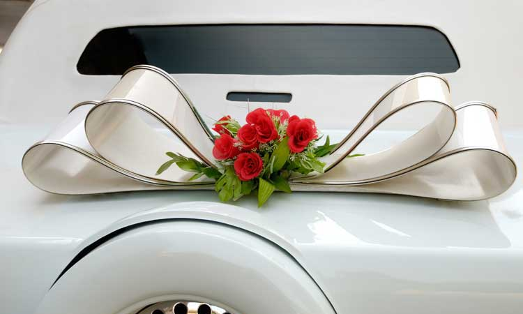 River Oaks Limousine - Proms & Homecoming Services
